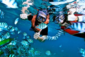 Snorkeling on Koh Tao - Samui Explorer