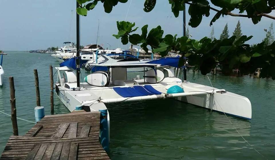 turbo catamaran private tours