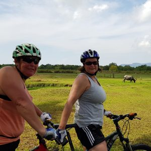 Half Day Cycling Tour