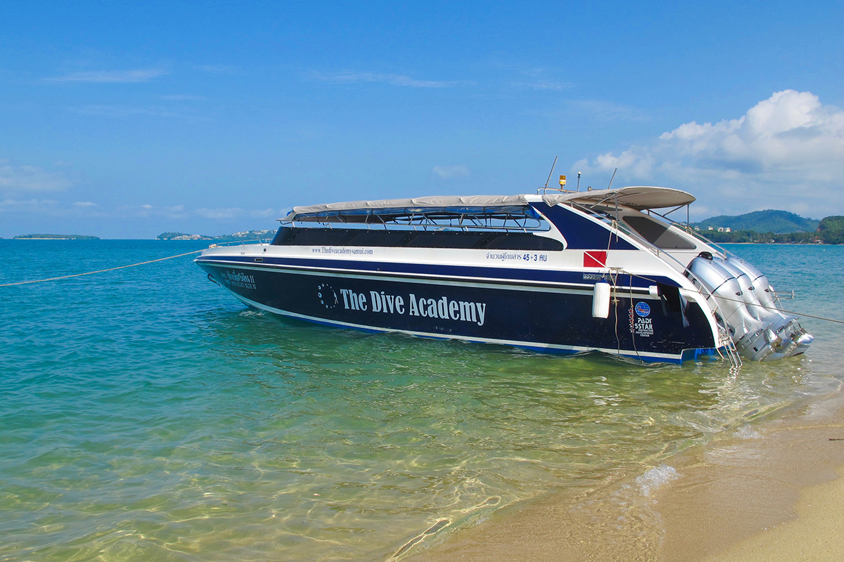 Snorkeling Trips & Tours