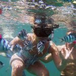 Island Hopping Snorkelling Private Charter Red Yacht