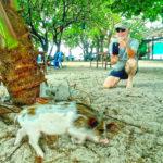 Sea-Safari Koh Madsum Pig Island & Off Road Tour